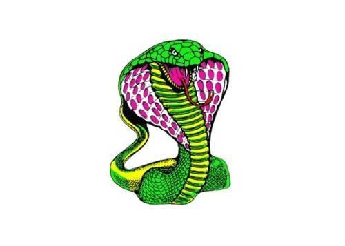 Tarra, pieni, 10x12cm, Käärme