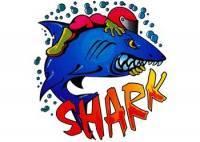 Tarra, normaali, 14x16cm, Shark