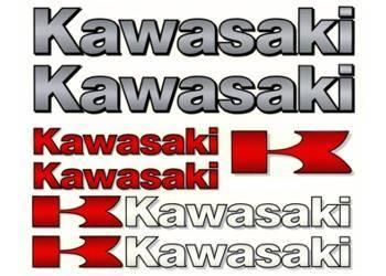 Tarra, iso, 20x24cm, Kawasaki
